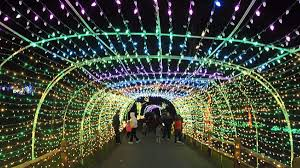 Lv Zoo Lights Lehigh Valley Zoos Fourth Annual Winter Light Spectacular