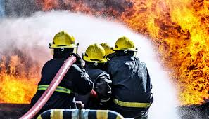 What gives firefighters the nerve to run into a fire? - Futurity