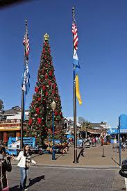 Panoramio  Photo Of Christmas Tree In Union Square San Francisco CAChristmas Tree In San Francisco