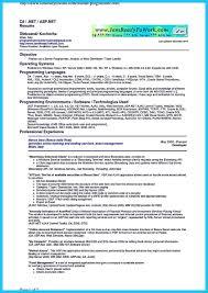Remote Web Developer Sample Resume Good Resume Outlines Healthcare