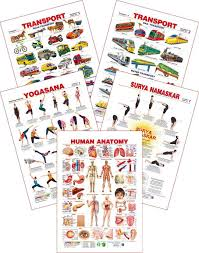 Music Education Wall Charts Set Of 5 Educational Wall Charts Human Anatomy Yogasan 1