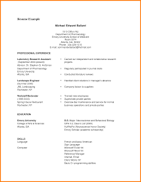 Cv Examples Student Pdf Cv Examples For Job Pdf Resume Examples