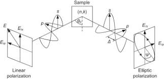 In Situ Ellipsometry Studies On Swelling Of Thin Polymer