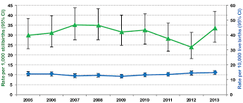 Risk Of Down Syndrome By Age Chart Down Syndrome Surveillance In Canada 2005 2013 Canada Ca