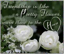 Beautiful Flowers Images With Friendship Quotes Best of Friendship Is Like A Pretty Flower Pictures Photos And Images