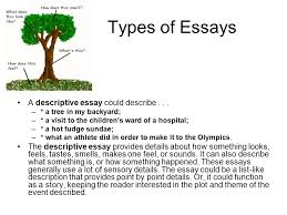 the essay an essay is a short piece of writing that discusses  types of essays a descriptive essay could describe