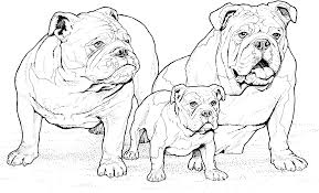Small Picture For Kids Download Realistic Dog Coloring Pages 36 For Your