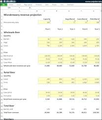 5 Year Financial Projection Template Pro Projections