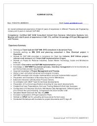 ABAP developer resume templates examples sample job description SAP