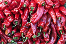 chili peppers. Interesting Peppers Red Cubanelle Chili Peppers On Chili Peppers Wikipedia