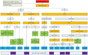 Anemia Chart Diagnostic Flowchart For Microcytic Anemias Caused By