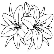 Disegno Di Poppy Dei Trolls Da Colorare Con Rosa Da Stampare E