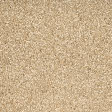 beige carpet texture. carefree noblesque carpets beige carpet texture n