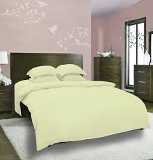 mrs a plus collection dyed plain light green bed sheet