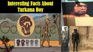 Interesting Facts About Turkana Boy ...