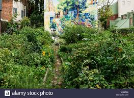 urban community garden locust street philadelphia pennsylvania usa stock image