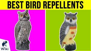 10 best bird repellents 2019 you