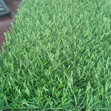 green grass football field. Football Field Turf Grass, Grass Suppliers And Manufacturers At Alibaba.com Green F