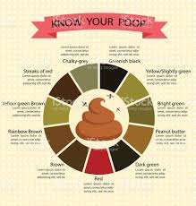 Lovely Design Ideas Stool Color Pictures Poop Changes Chart And Meaning  Healthy Concept ...