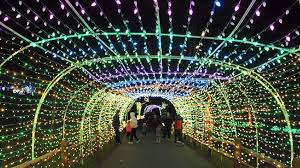 spectacular lighting. Lehigh Valley Zoo\u0027s Fourth Annual Winter Light Spectacular Has Dazzling New Features - The Morning Call Lighting T