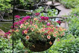 Pink And Peach Flowers In Hanging Basket | 21 Gorgeous Flower Planter Ideas