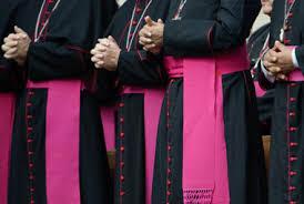 Image result for bishops