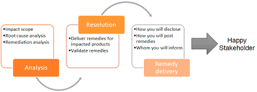Vulnerability Remediation Process Flow Chart Psirt Services Framework 1 0