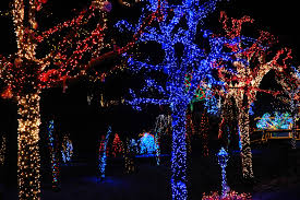Indianapolis Zoo Lights Where To Find The Best Christmas Light Displays In Indiana