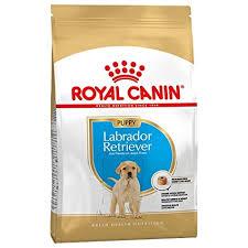 <b>Royal Canin Labrador</b> Junior, 3 kg: Amazon.in: Pet Supplies