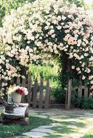 95 Best Blumengarten Images On Pinterest  Flowers Garden Romantic Cottage Gardens