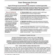 executive resume writer preview thumbnail best resume writing service military san