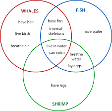 How To Use A Triple Venn Diagram Example Of Venn Diagram With 3 Circles Magdalene Project Org