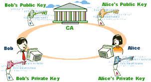 Enrolling For A Digital Certificate Comodo