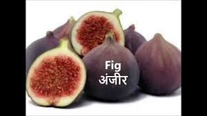 list of 20 fruits name in hindi english with pictures for nursery kids and children