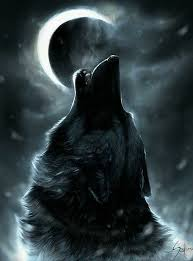 black wolf howling wallpaper. Simple Wolf Cool Wolf Wallpaper  App From Google Play Howling Moon Black Night  Fog Mist Fluffy Awesome Drawing In Black Howling S