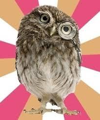 Eating Disordered Owl via Relatably.com