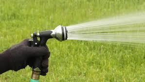 garden hose sprayer spraying water