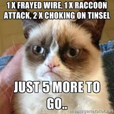 1 X FRAyed wire, 1 x raccoon attack, 2 x choking on tinsel just 5 ... via Relatably.com