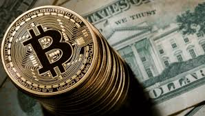 Image result for bitcoin business