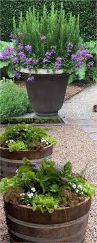Small Picture Best 25 Container garden ideas only on Pinterest Outdoor potted