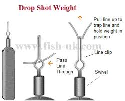 Tackle Drop Shotting For Perch And Drop Shot Fishing Set Up