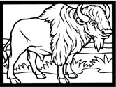 Small Picture Rocky Mountain Animals Coloring Pages