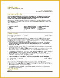 Social Media Specialist Resume Sample Inventory Specialist Resume Sample Lovely Social Media Specialist 11