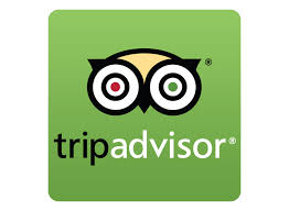 tripadvisor app logo.  Tripadvisor Tripadvisor Logo Vector PNG Transparent With App
