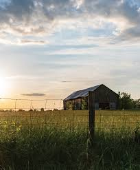 Summers at Mini and Papa's Virginia Farm - Capper's Farmer | Practical  Advice for the Homemade Life