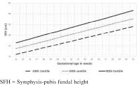 Figure 2 From Symphysis Pubis Fundal Height Charts To Assess