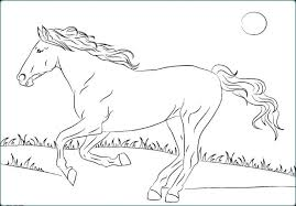 Printable Coloring Pages Horses Free For Adults Horse Advanced