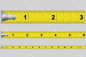tape measure vector. an illustrated tape measure in inches stock vector - 31003819