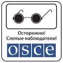 ОБСЕ готова увеличить количество наблюдателей на Донбассе до тысячи человек - Цензор.НЕТ 7730