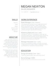 Curriculum Vitae Free Template Fascinating Professional Template Word It Cv Free Download 48 Post Curriculum